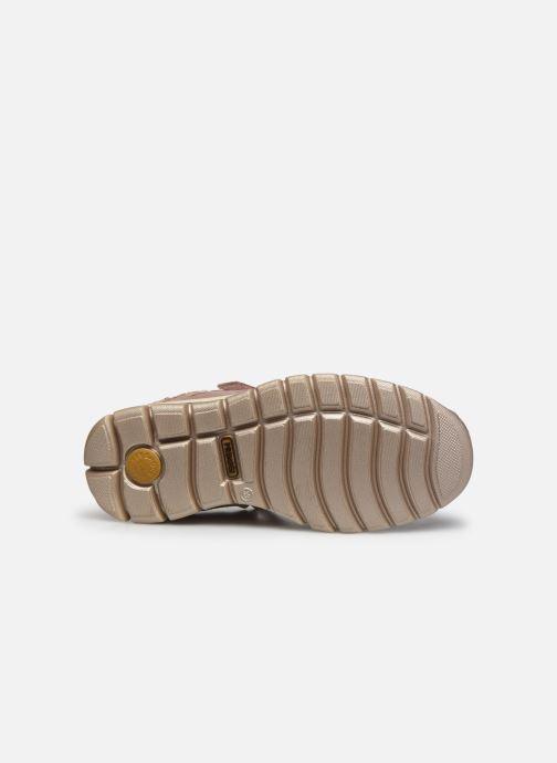 Sneakers Primigi PHL GTX 43885 Rosa immagine dall'alto