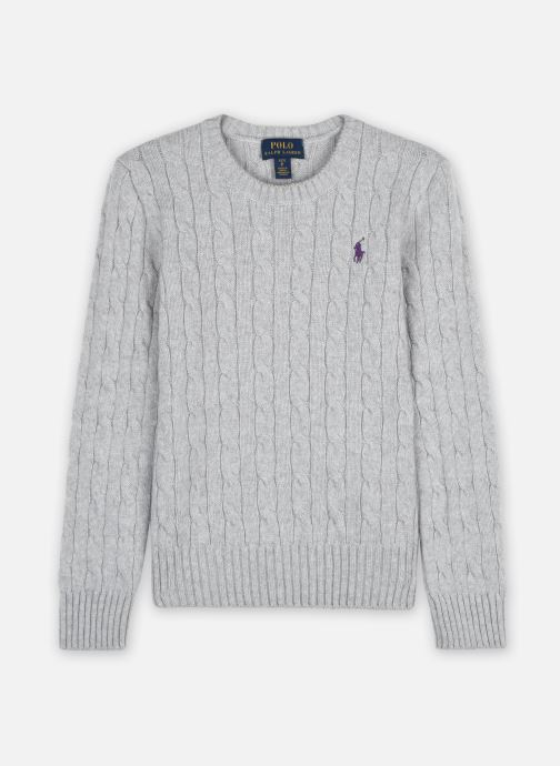 Vêtements Polo Ralph Lauren SOLID SWTR-TOPS-SWEATER Gris vue détail/paire