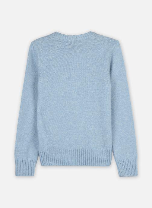 Vêtements Polo Ralph Lauren WOOL CREW-TOPS-SWEATER Bleu vue portées chaussures