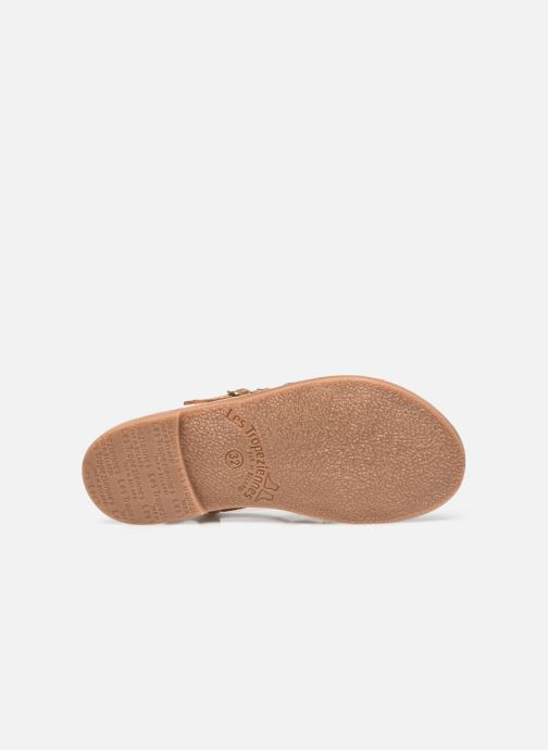 Sandales et nu-pieds Les Tropéziennes par M Belarbi Monga Or et bronze vue haut