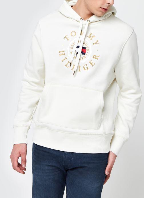 Ropa Tommy Hilfiger Sweatshirt hoodie - Icon Coin Hoody Beige vista de detalle / par