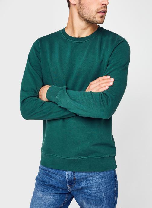 Abbigliamento Colorful Standard Classic Organic Crew Verde vedi dettaglio/paio