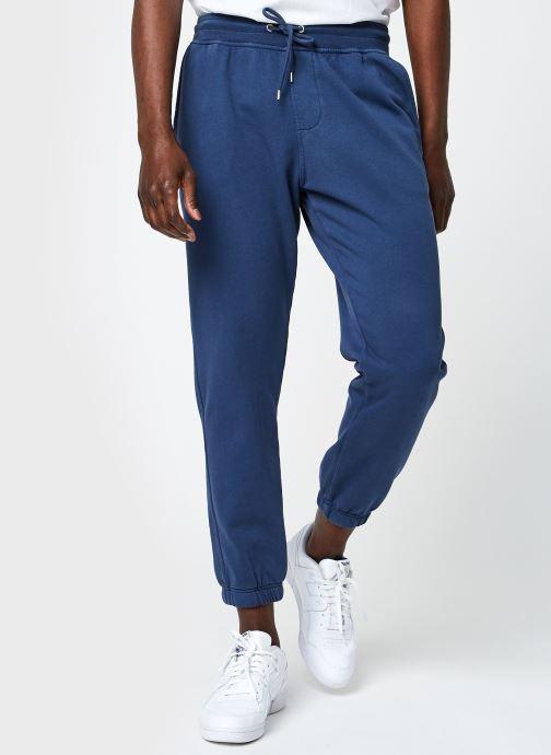 Vêtements Colorful Standard Classic Organic Sweatpants Bleu vue détail/paire