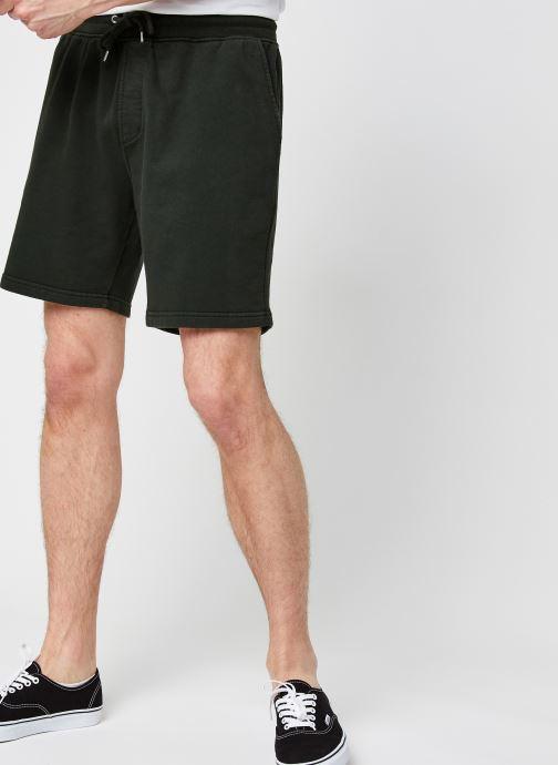 Vêtements Colorful Standard Classic Organic Sweatshorts Vert vue détail/paire