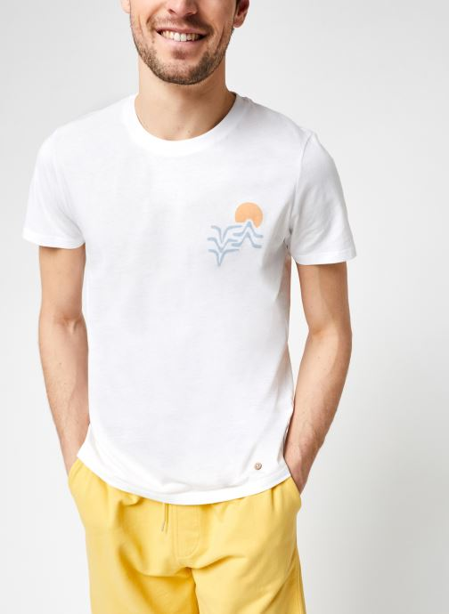 T-shirt - Arcy Cotton New