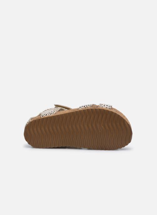 Sandales et nu-pieds Shoesme Bio Sandal BI21S075 Beige vue haut