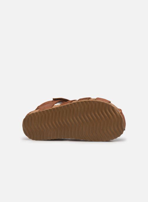 Sandali e scarpe aperte Shoesme Bio Sandal BI21S091 Marrone immagine dall'alto