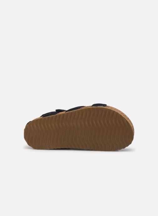Sandali e scarpe aperte Shoesme Bio Sandal BI21S096 Azzurro immagine dall'alto