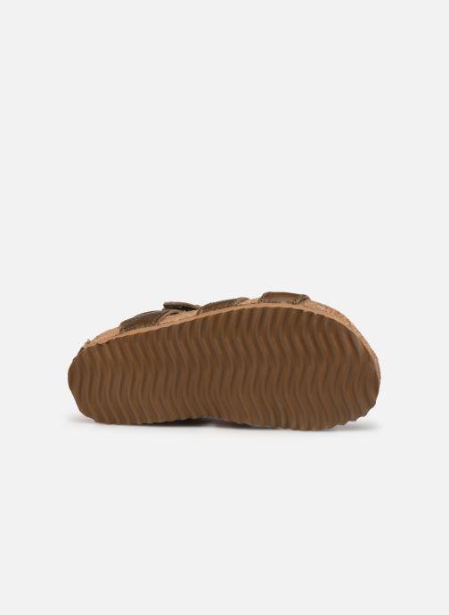 Sandalias Shoesme Bio Sandal BI21S098 Verde vista de arriba