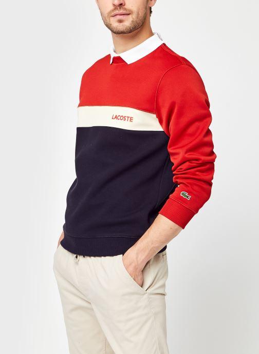 Kleding Lacoste Sweatshirt ML Lacoste SH0058 Blauw detail