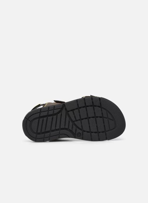 Sandali e scarpe aperte BOSS J09153 Marrone immagine dall'alto