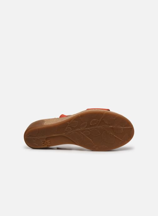 Sandales et nu-pieds El Naturalista Leaves N5019 Orange vue haut