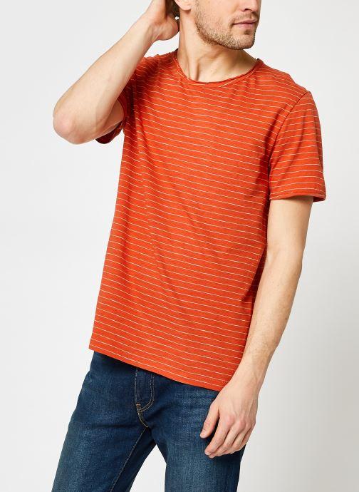 Vêtements Accessoires Slhmorgan Stripe Ss O-Neck Tee W NOOS
