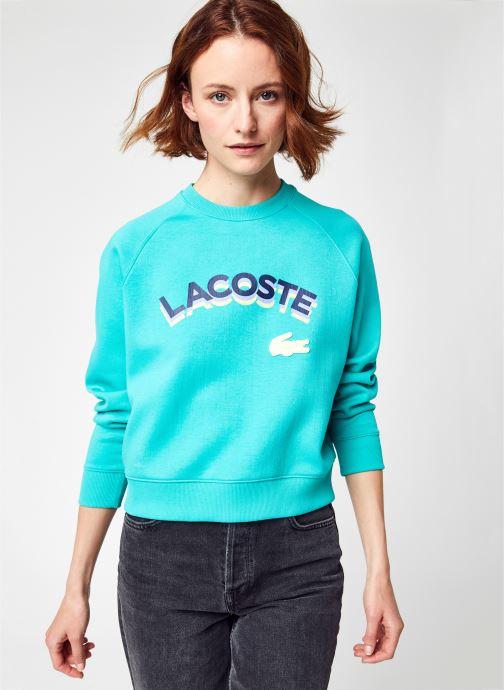 Abbigliamento Accessori Sweat-shirt SF9427