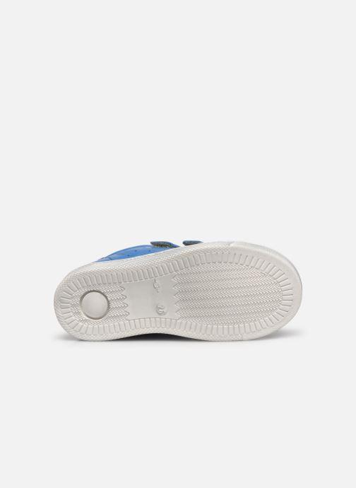 Sneaker Froddo G2130232 blau ansicht von oben