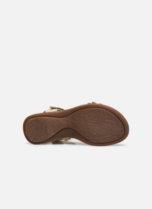 Sandali e scarpe aperte Froddo G3150181 Oro e bronzo immagine dall'alto