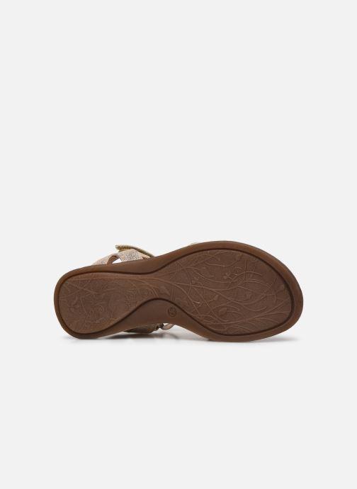 Sandali e scarpe aperte Froddo G3150182 Oro e bronzo immagine dall'alto