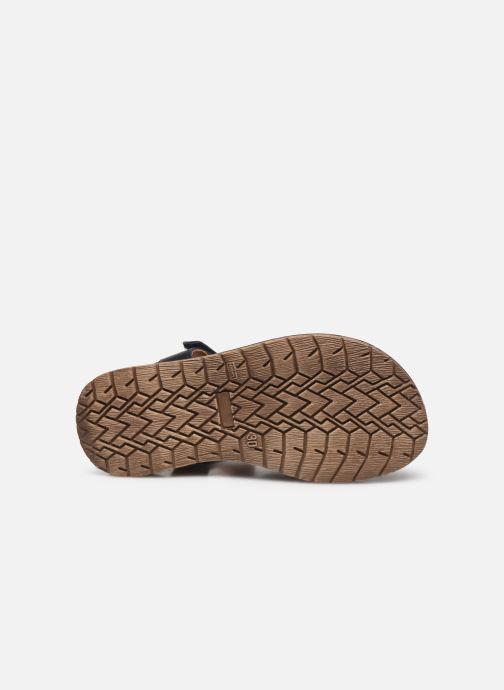 Sandali e scarpe aperte Froddo G3150191 Azzurro immagine dall'alto