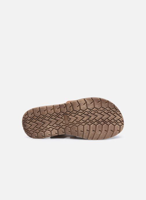 Sandales et nu-pieds Froddo G3150193 Marron vue haut