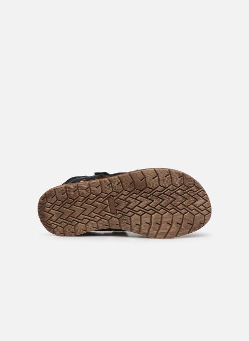 Sandali e scarpe aperte Froddo G3150194 Azzurro immagine dall'alto