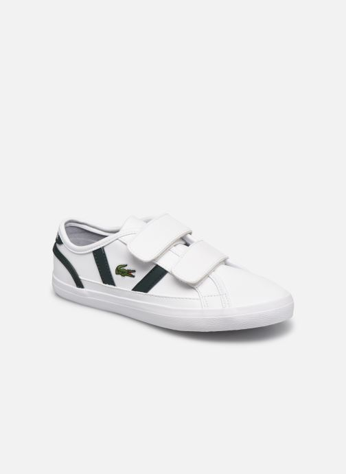 Sneakers Bambino SIDELINE 0721 1 CUC