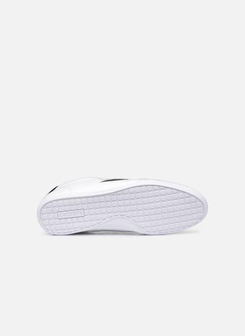 Sneaker Lacoste Chaymon 0721 1 Cma M weiß ansicht von oben