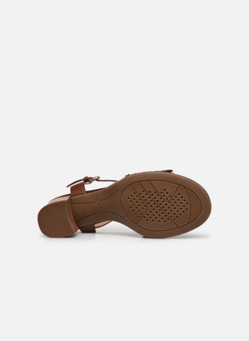 Sandali e scarpe aperte Geox D SOZY MID A Marrone immagine dall'alto
