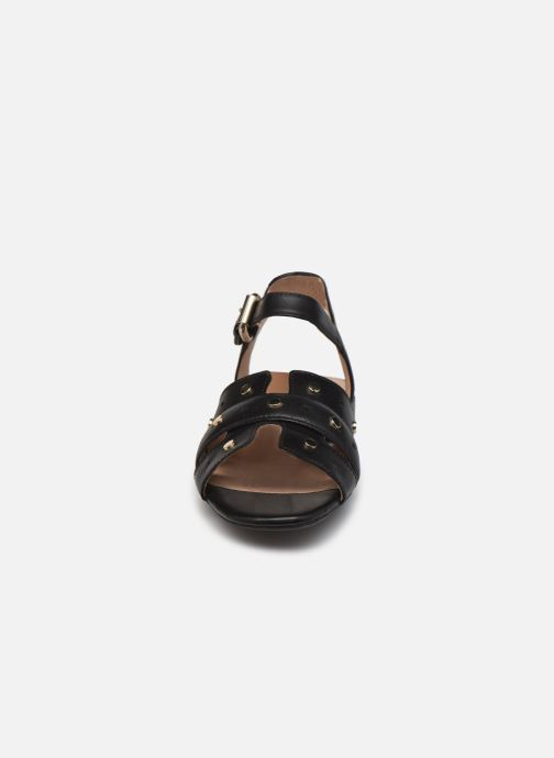 Sandali e scarpe aperte Geox D WISTREY SANDALO C Nero modello indossato
