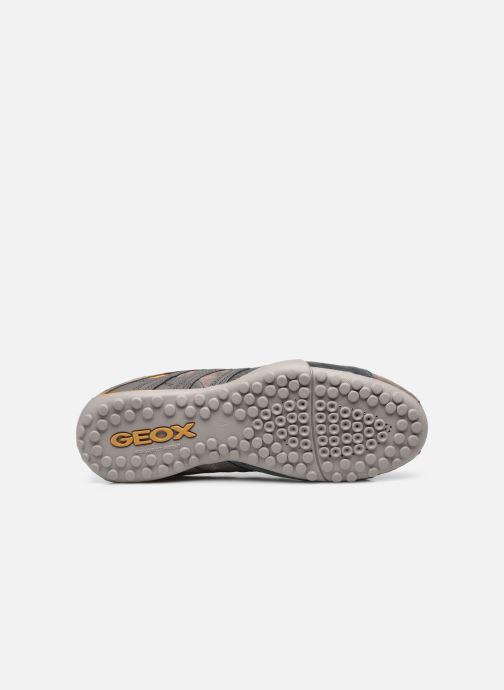 Sneaker Geox UOMO SNAKE K grau ansicht von oben