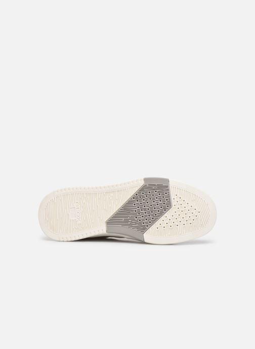 Sneakers Geox U SEGNALE B Bianco immagine dall'alto