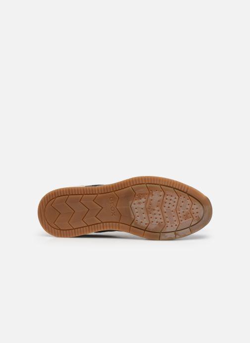 Sneakers Geox U EDIZIONE A Grigio immagine dall'alto