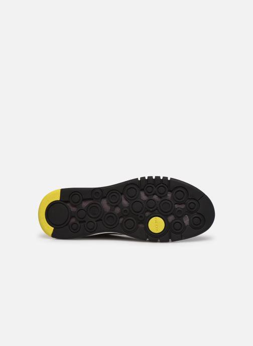 Sneaker Geox U AERANTIS D grau ansicht von oben