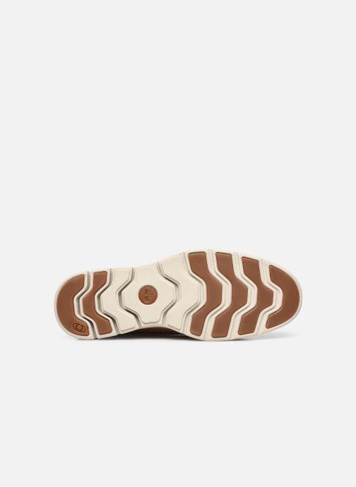Chaussures à lacets Timberland Bradstreet Marron vue haut