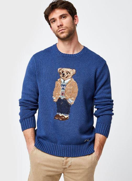 Vêtements Accessoires Pull ML Polo Bear