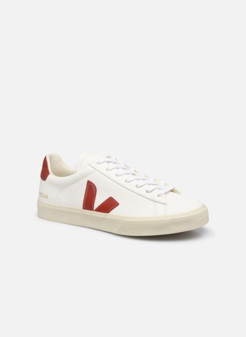 Baskets Homme Campo M