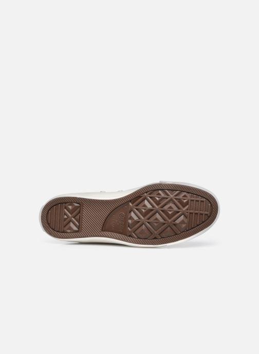 Sneaker Converse Chuck Taylor All Star It's OK To Wander Hi weiß ansicht von oben