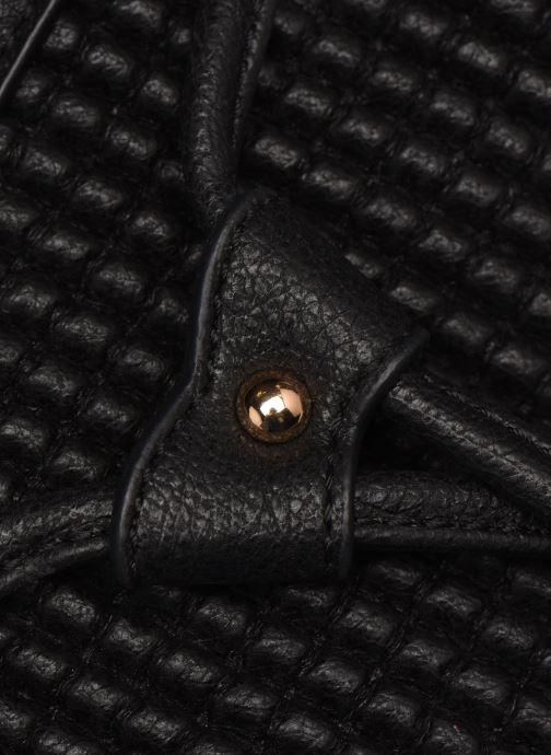 Handtaschen Hexagona ÉCLAT PORTÉ MAIN schwarz ansicht von links