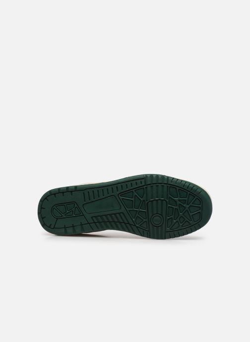 Sneaker Ecoalf Tenis Sneakers Man weiß ansicht von oben