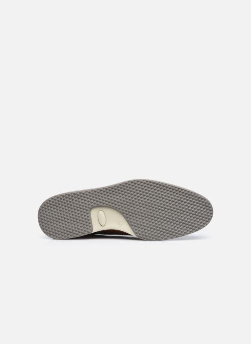 Zapatos con cordones Bullboxer 633K26865ACGNASU00 Marrón vista de arriba