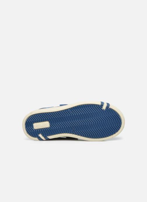 Sneakers Primigi Boy Hook 7428511 Azzurro immagine dall'alto