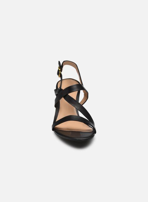 Sandali e scarpe aperte Lauren Ralph Lauren MACKENSIE-SANDALS-CASUAL Nero modello indossato