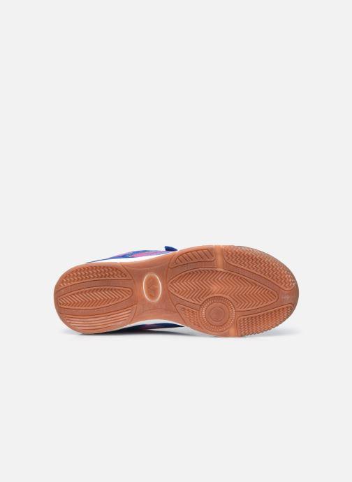 Sneakers Lico Charlie V Viola immagine dall'alto