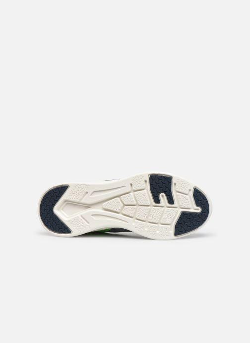 Sneakers Lico Milos Azzurro immagine dall'alto