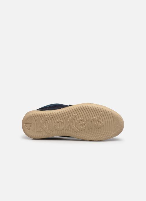 Sneaker Kickers JUNGLE H blau ansicht von oben