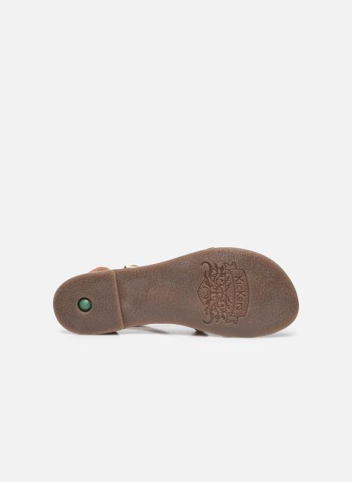 Sandali e scarpe aperte Kickers DIAPPO Marrone immagine dall'alto