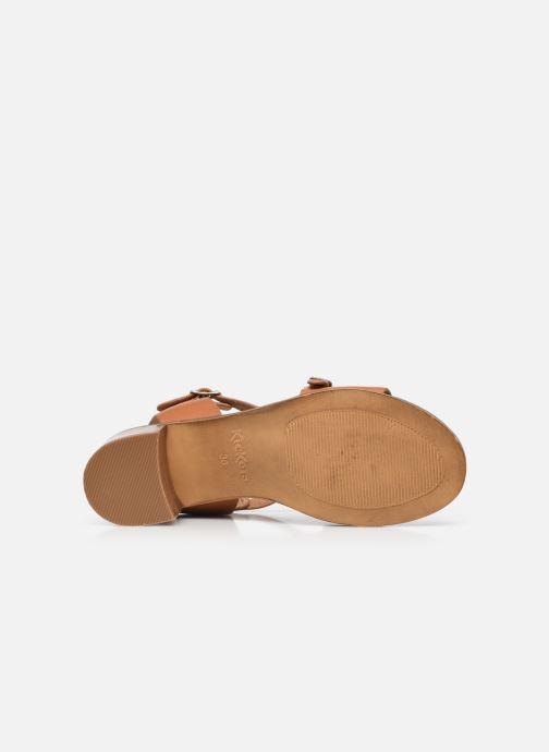 Sandalen Kickers VOLUBILIS braun ansicht von oben