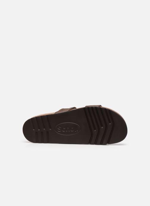 Sandali e scarpe aperte Scholl Tymeg Marrone immagine dall'alto