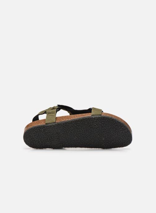 Sandali e scarpe aperte Scholl Greeny Heaven Verde immagine dall'alto