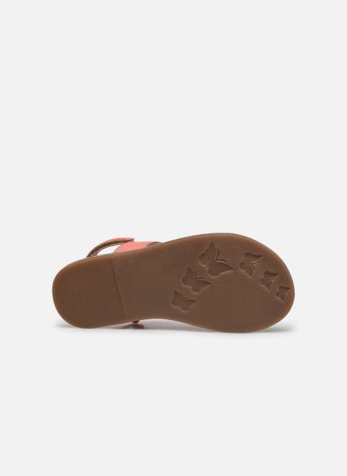 Sandalen Kickers Dyacross rosa ansicht von oben