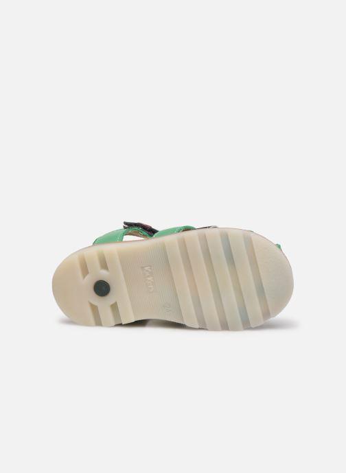 Sandali e scarpe aperte Kickers Nonosti Verde immagine dall'alto